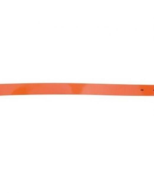 louri skulou apo imanta plastikopoihmeno portokali fwsforize